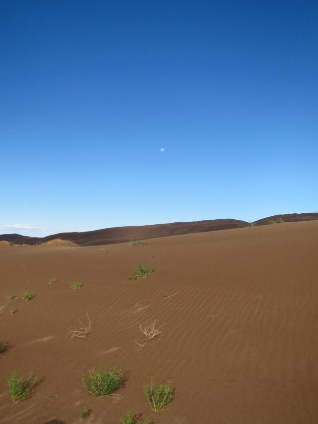 The dunes.